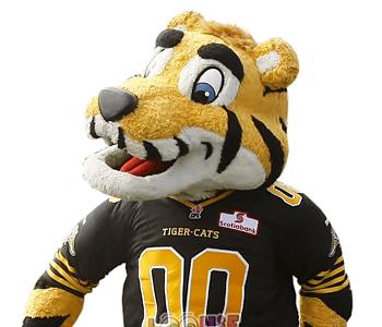 custom mascot costume | corporate mascot costume | custom sports team mascot costume